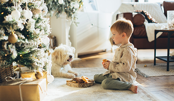 boy sitting with pet at Christmas tree