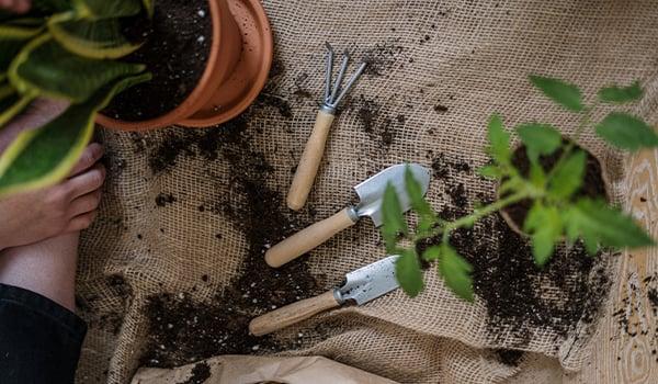 garden tools on burlap