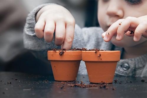 child planting seeds-1