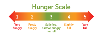hunger scale showing very hungry on left and very full on right